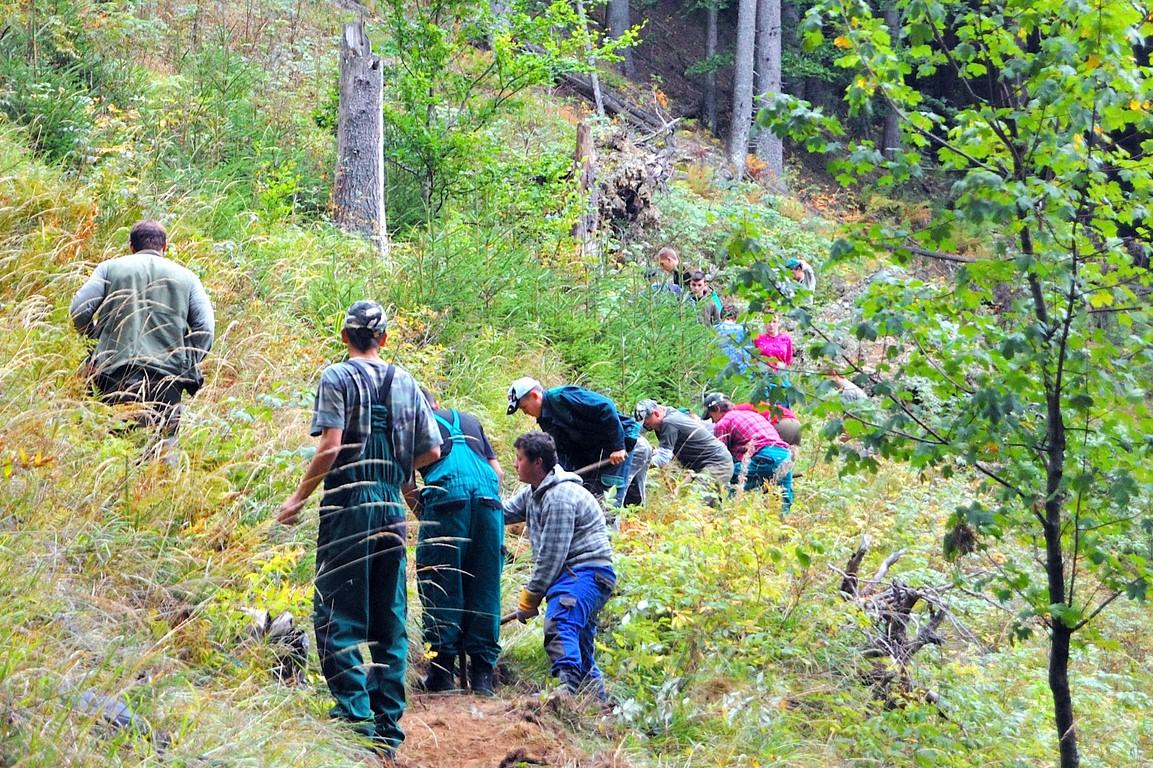 SOŠLaD Odborná prax ŠO lesníctvo v zalesňovaní