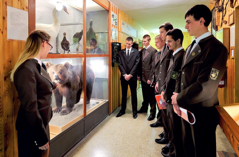 SOŠLaD výučba lesníckej zoológie pri školských zbierkach